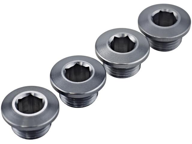 SRAM XX1 kettingbladschroeven aluminium grijs